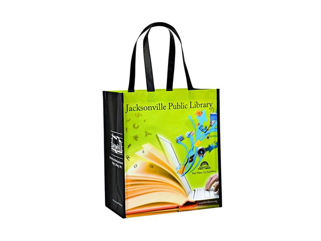 Laminated Tela Bag (35x40 cm)