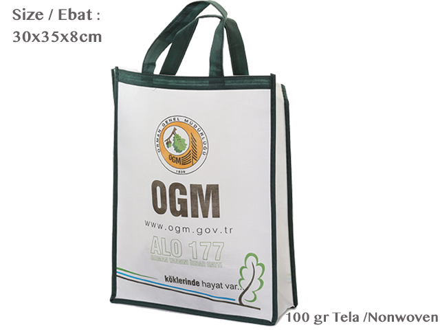 Nonwoven Fair Size Bag ( 30x35x8cm )