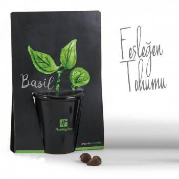 Basil Planting Kit
