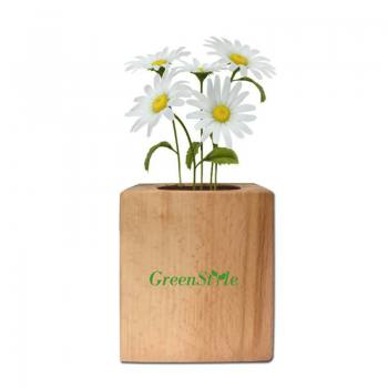 Camomile Planting Kit with Wooden Pot
