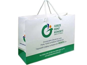 Carton Bag (35x51x14 cm)