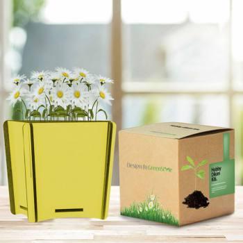 Chamomile Planting Kit
