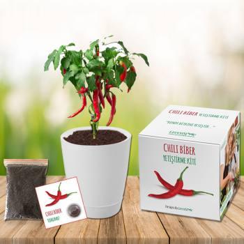 Chili Pepper Grow Kit