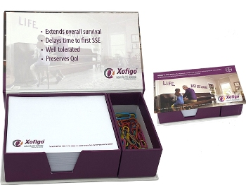 Boxed Notepads with Paper Clips