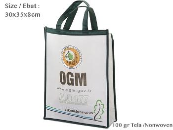 Nonwoven Fair Size Bag ( 30x35x8cm )