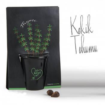 Thyme Planting Kit