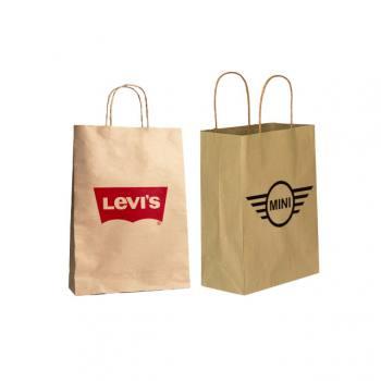 Twisted Handle Kraft Paper Bag (18 x 24 x 8cm)