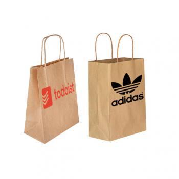 Twisted Handle Kraft Paper Bag (25 x 31 x 12cm)