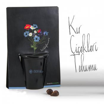 Wild Flowers Planting Kit