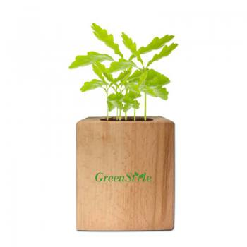 Wooden Potted Wildflower Planting Kit